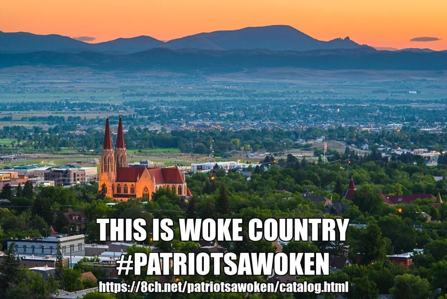 Surviving the Onslaught, Fighting for Victory! #PatriotsAwoken #Voat